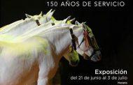 EXPOSICIÓN CRIA CABALLAR DE LAS FUERZAS ARMADAS