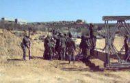 El Ejército de Tierra instalará, de forma provisional, dos puentes en Sevilla y Mallorca.