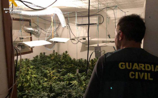 La Guardia Civil detiene a los moradores de una vivienda por cultivar marihuana en su interior